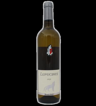Lupucinus Branco White 2019